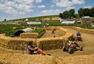 Peddle Karts at Cherry Crest Farm