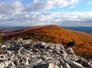 A large forest of red, orange, and yellow trees fill the valley area at the base of the Hawk Mountain Sanctuary.