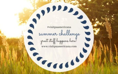 Great Stuff Summer Challenge in Berks County