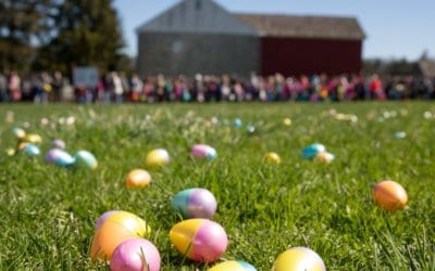 Things to Do With Kids in Spring in Berks County