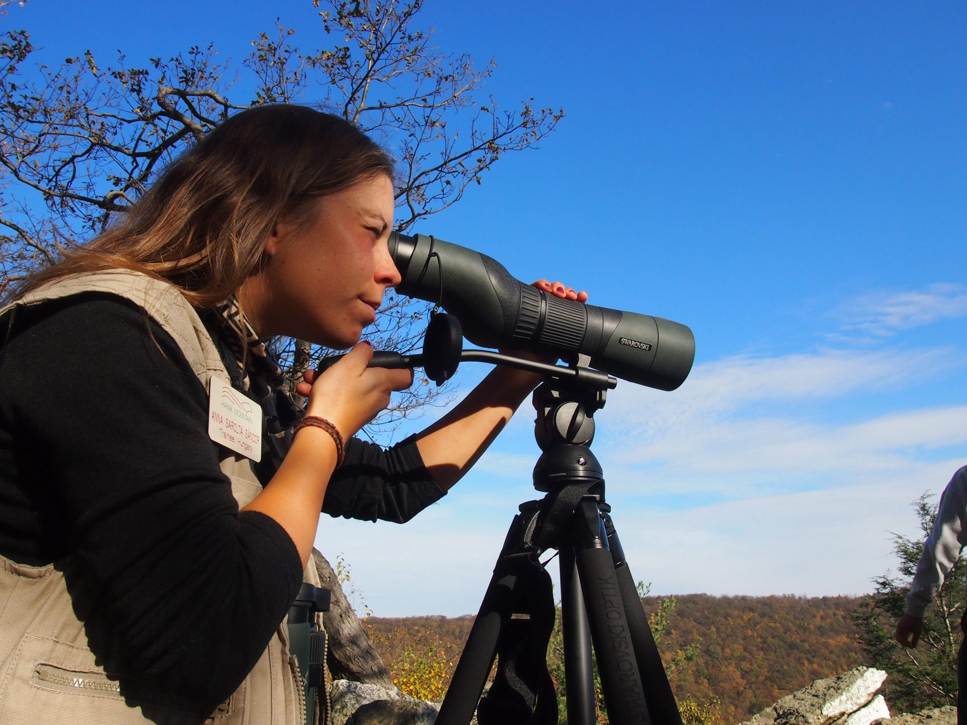 Young Spotter looks through binoculars at approaching hawks atop Hawk Mountain in Pennsylvanias Americana Region