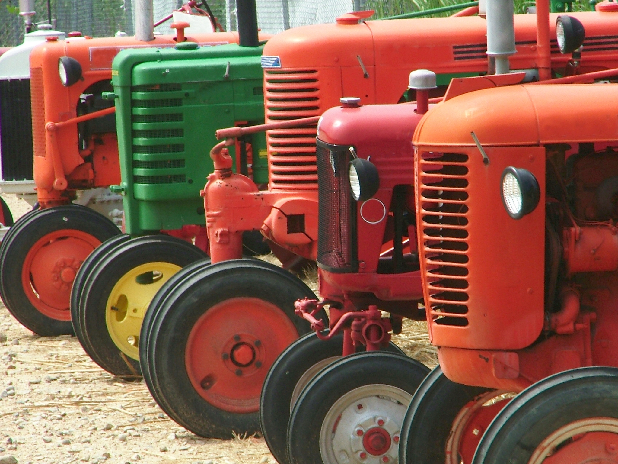 Five tractors of various colors line up to wait their turn to participate in the highly anticipated tractor pull competition.